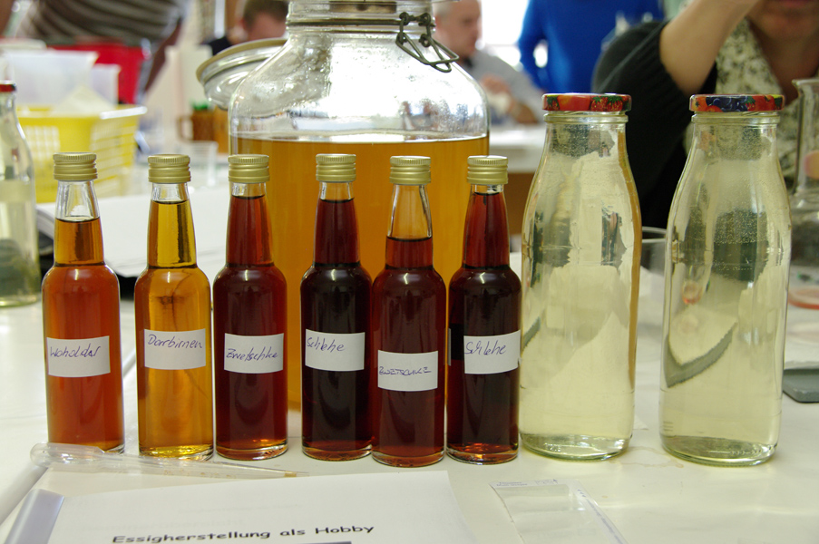 Several Vinegars and Two Starters
