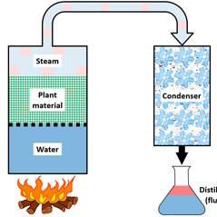 Dampfdestillation